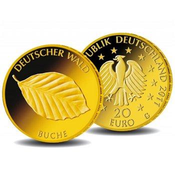 20 Euro Goldmünze 2011, Deutscher Wald: Buche