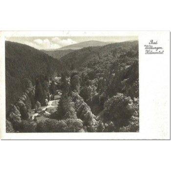 3590 Bad Wildungen - Bildpostkarte