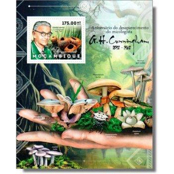 Pilze - Briefmarken-Block postfrisch, Katalog-Nr. 6166 Bl. 690, Mocambique