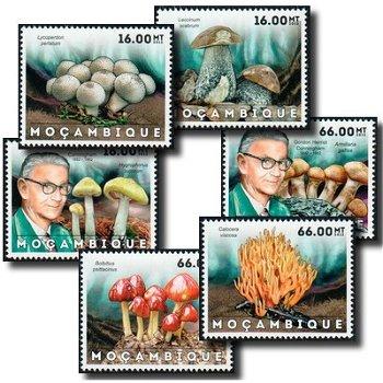 Pilze - 6 Briefmarken postfrisch, Katalog-Nr. 6160-6165, Mocambique