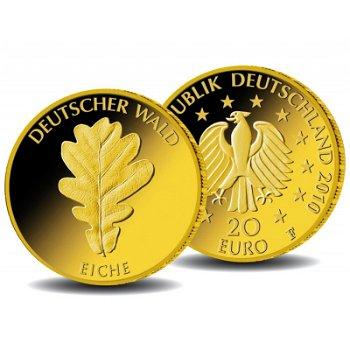 20 Euro Goldmünze 2010, Deutscher Wald: Eiche, inkl. Holzkassette
