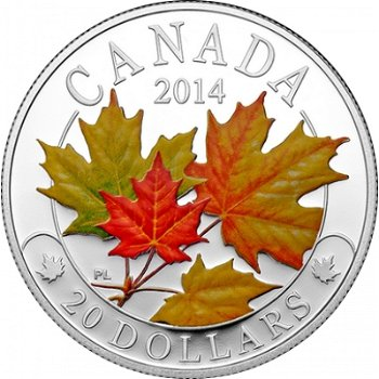 Ahornblätter in Herbstfarben, 20 Dollar Silbermünze Canada