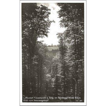6304 Frauenwald - Bildpostkarte