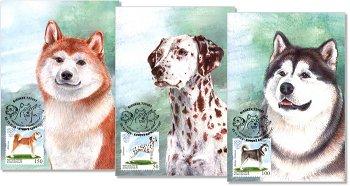 Haustiere: Hunde - 3 Maximumkarten, Kirgisien