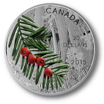 Der Eiben-Zweig, 20 Dollar Silbermünze, Canada
