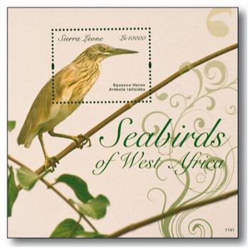 Vögel/Rallenreiher - Briefmarken-Block postfrisch, Sierra Leone