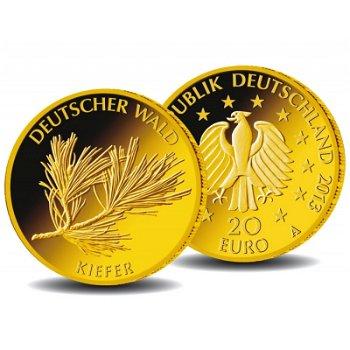 20 Euro Goldmünze 2013, Deutscher Wald: Kiefer