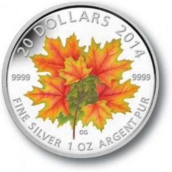 Ahornblätter, 20 Dollar Silbermünze Canada