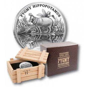 Zwergflußpferd, 2 Dollar Silbermünze, Niue
