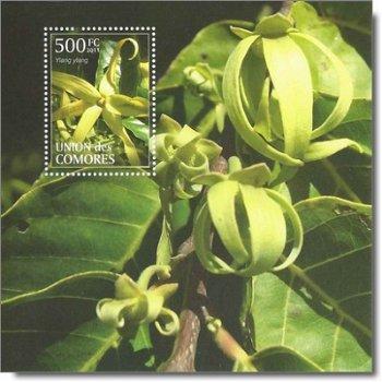 "Blüte ""Ylang-Ylang-Baum"" - Briefmarken-Block postfrisch, Katalog-Nr. 3085 Bl. 636, Komoren"
