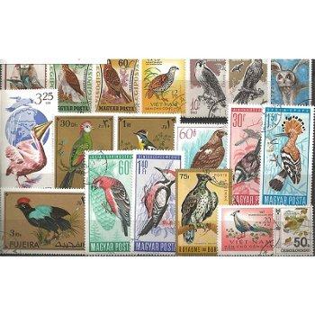 Vögel - 1.000 verschiedene Briefmarken
