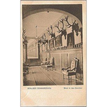6825 Schwarzburg - Bildpostkarte