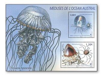 Jellyfish - stamp pad mint, French Antarctic Territories