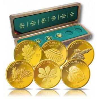 Komplette Sammlung aller sechs 20 Euro Goldmünzen Deutscher Wald, inkl. Holzkassette