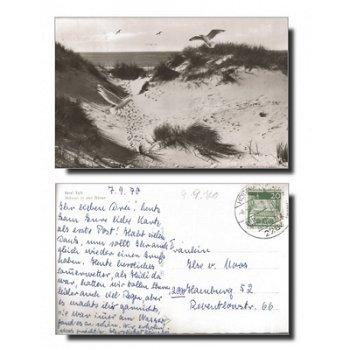 """2284 Hörnum - Postkarte """"Möwen in den Dünen"""""""