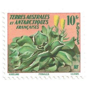 Pflanzen der Antarktis - Briefmarke postfrisch, Katalog-Nr. 13, TAAF